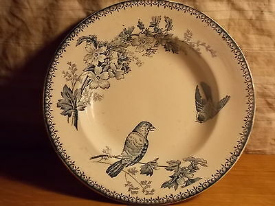 FAIENCE GREAT LONGWY PLATE HOLLOW SERVICE MESANGE circa 1920