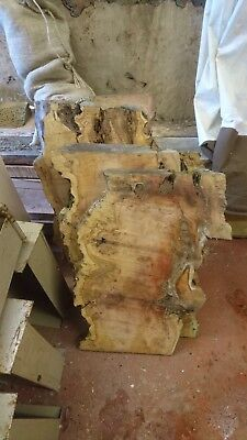 hardwood timber Pippy Burr Yew sliced full log for sale