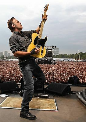 Bruce Springsteen Poster Hard Rock Hyde Park Large River FREE P+P CHOOSE UR SIZE