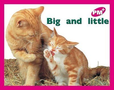 PM PLUS MAGENTA 2 FCN BIG AND LITTLE x 6: Big and Little PM Plus Ma... Paperback