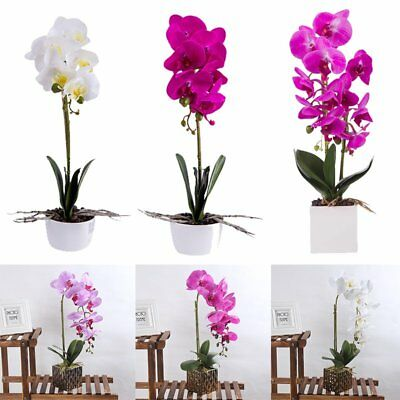 Artificial Butterfly Orchid Flowers Plants in Pot Fake Home Decor Wedding Party