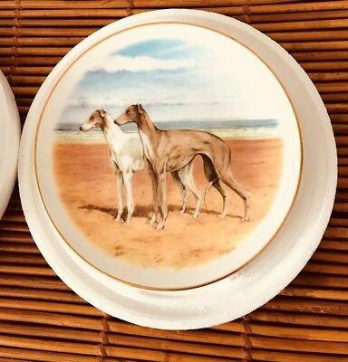 Louise Wilde Greyhound Collectors Plate