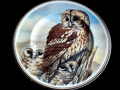 FENTON CHINA COMPANY 3 Tawny Owls 10 3/4 inch Collectors/Display/ Cabinet Plate