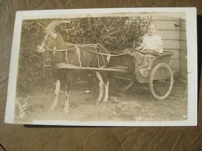 Child in Wicker Cart Harnessed to a Goat OLD RPPC Real Photo Postcard 1918-1930