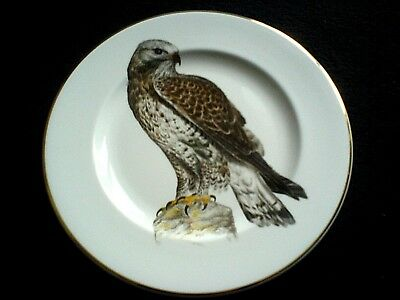 FENTON CHINA STAFF Signed H Arndt 73 Sparrowhawk 10in Display Cabinet Plate
