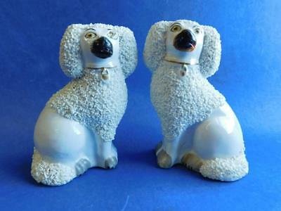 Fine Pair Staffordshire Mantle Dogs Spatter Finish c1850s King Charles Spaniels
