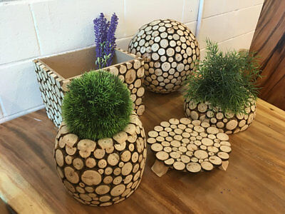 French Style Wooden Gardening Pot/Box (5 Pieces) Combo, Eco-Luxury Wood Garden