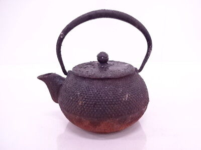 3557723: Japanese Iron Ware / Nanbu Tekki Tea Pot