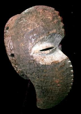 Old Tribal Dan Bird   Mask        --- Coted'Ivoire
