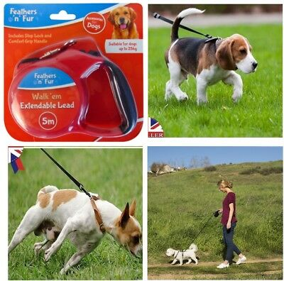 5M Retractable Dog Lead With Comfort Grip and Stop Lock
