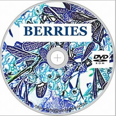 Berries 25 books on dvd, Growing, Cultivation, Strawberry, Raspberry, Current
