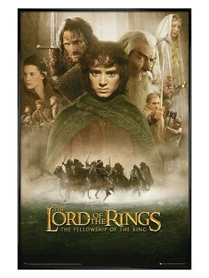 Poster 61x91,5cm cadre noir brillant The Fellowship de The Lord of the Rings