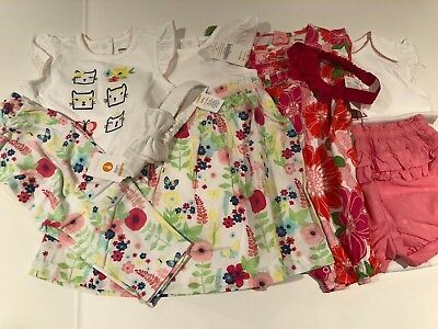 NWT Baby Girl Gymboree 9 pc Mixed Lot Outfits Flamingo  Floral Cats Sz 12-18 Mo.