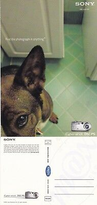 SONY CYBER SHOT DSC PS CAMERA UNUSED ADVERTISING COLOUR POSTCARD (a)