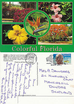 1994 Multi Views Of Flora In Florida United States Colour Postcard