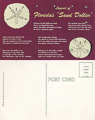 1960's LEGEND OF THE SAND DOLLAR FLORIDA UNITED STATES UNUSED COLOUR POSTCARD