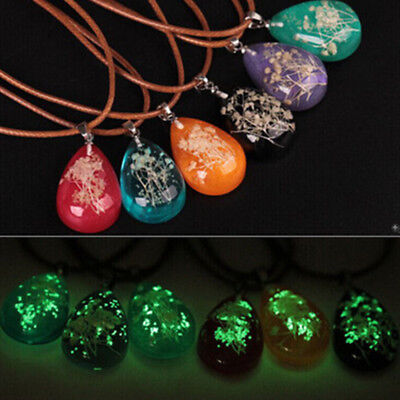 New Women Dried Flower Glass Glow In The Dark Pendant Girls Necklace Chain Gift