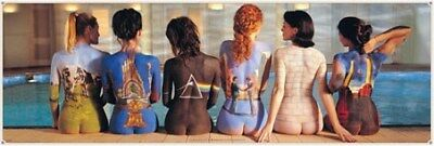 Pink Floyd Back Catalogue Campaign Poster 158 x 53 cm
