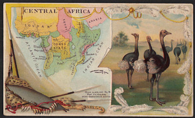 Arbuckle's Coffee Central Africa Country Map VTG Trade Card #63 Cheetah Hunting
