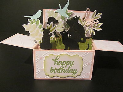 Handmade card, 3D birthday Card in a box -Cats & Dogs, PERSONALISED