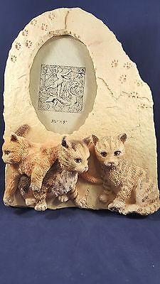 3D Photo Frame With 3 Kittens Holds 3.5 x 5 Inch Photo