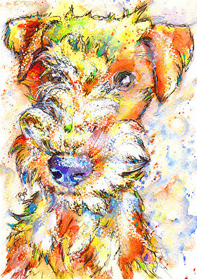 LAKELAND TERRIER Dog PRINT from an ORIGINAL WATERCOLOUR Painting Art by Josie P