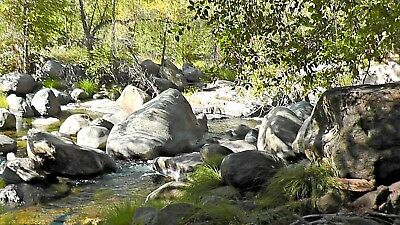 Gold Mine California Unpatented Placer Mining Claim- Three Rivers