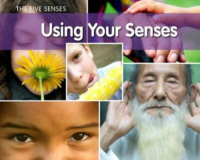 Using Your Senses (Physical Science) by Rissman, Rebecca Book The Cheap Fast