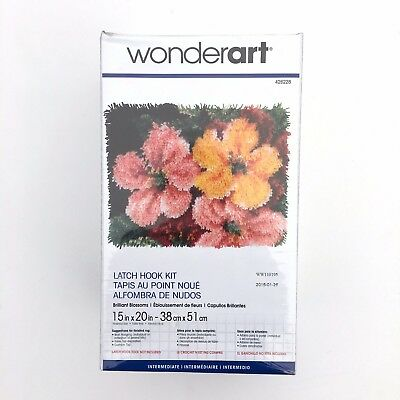Brillante Flores Esmirna Tapete Kit 38.1cm x 50.8cm Floral Fowers rectangular