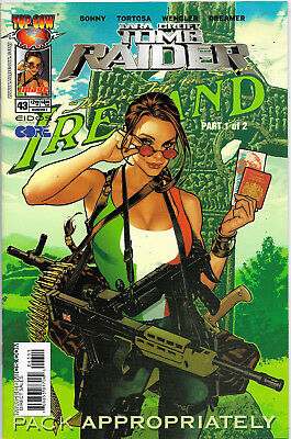 Tomb Raider The Series #43 Top Cow Comics Adam Hughes Cover NM