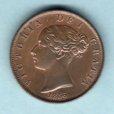 Great Britain. 1856 Victoria - Halfpenny.. Much Lustre - UNC