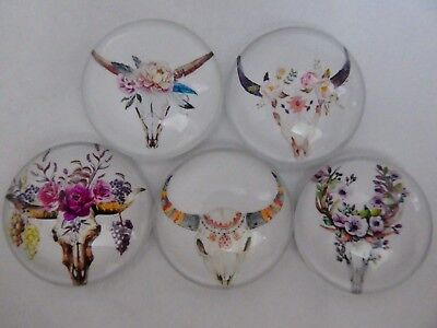 Set Of 5 X 25mm Glass Dome Cabochons -  Assorted Skull Flowers Designs. (1)