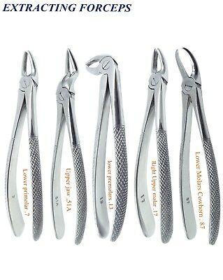 Extracting Roots Forceps Lower Molars Cowhorn lower premolars Right Upper molar