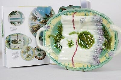 French Majolica Asparagus Server by Salins Les Bains