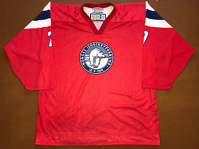 IIHF Norway Ice Hockey Game Worn Jersey Shirt Size L #7  Norge Ishockey