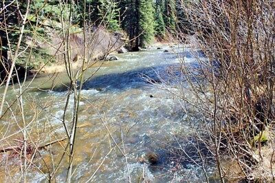 Colorado Gold Mining Claim Park Creek Summit Gold Silver Mine - 20 acres
