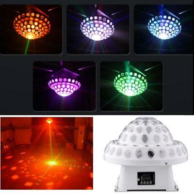 Hot sell Mini LED Mushroom Lase RGBW for dj party stage Christams lighting Kits.