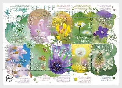 Nederland/The Netherlands - Postfris/MNH - Sheet Wild Flowers 2018