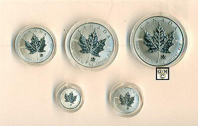 2004 Set of 5 Privy Mark Silver Maple Leafs .9999 Fine (10818) (NT) (OOAK)
