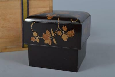 M1129: Japanese XF Old Wooden Lacquer ware CONTAINER Accessories Case Box w/box