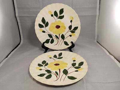 Set of 2 Blue Ridge Southern Pottery Rock Rose Yellow Dinner Plates