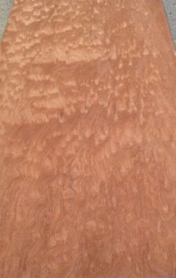 """Quilted Sapele Wood Veneer: 6 Sheets (25"""" X 14"""" 14 Sq Ft"""