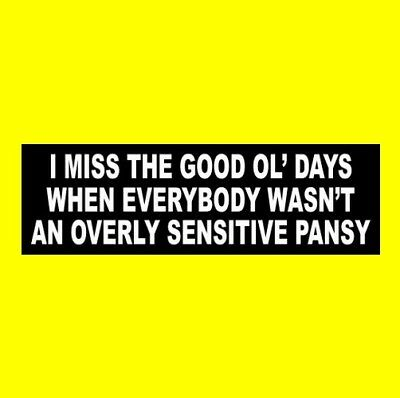 """OVERLY SENSITIVE PANSY"" Anti Political Correctness BUMPER STICKER gun rights"