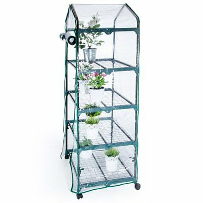 Pier Surplus 2.29 Ft. W x 1.60 Ft. D Mini Greenhouse