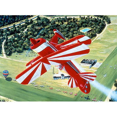 Flying is - THE PITTS Signed/Numbered
