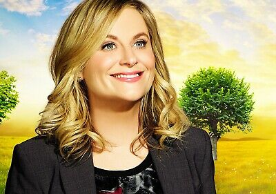 PARKS & RECREATION TV Show PHOTO Print POSTER Series Amy Poehler Leslie Knope 02