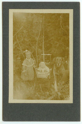 VINTAGE RARE YOUNG KIDS CANINE: Family Dog and Children Carriage Cabinet Card