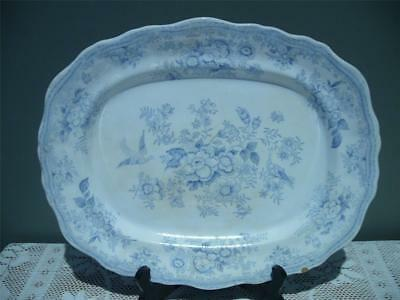 Antique Small Serving Platter - Asiatic Pheasants - Blue & White - Reas  Cond