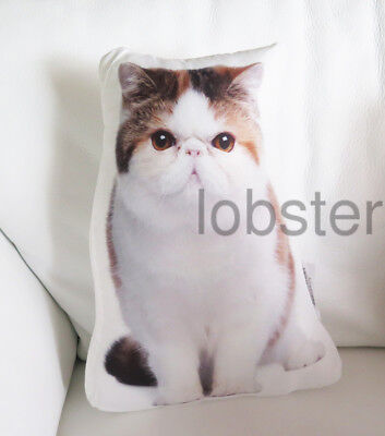 """KITTY CAT PILLOW White Rust Black Photograph on fabric 14"""" zipper cover SALE"""