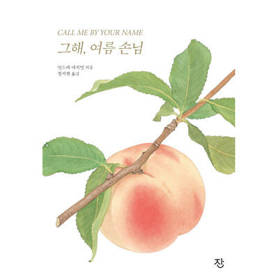그해 여름 손님 Call Me by Your Name Hard Cover Korean Text Book Fiction Novel